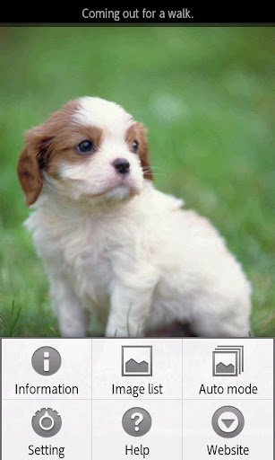 【免費書籍App】ipiks Love dogs 1 Lite-APP點子
