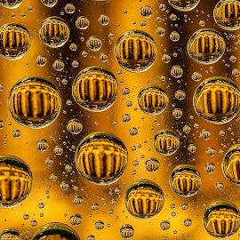 Parthenon Under Dew Drops by Chris Kontoravdis - Abstract Macro ( abstract, water drops, macro, parthenon, close up,  )