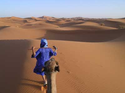 Il mondo dal dorso di cammello (che poi è un dromedario)