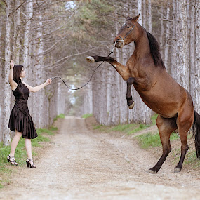 Girl and the horse in the woods by Tamara Didenko - Animals Horses ( girl, beautiful, horse, rearing,  )