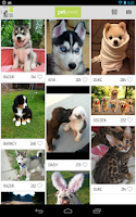 Screenshot of Peterest - Pet Image Gallery