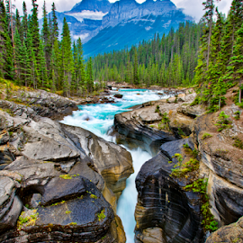 Mistaya Canyon by Steve Rogers - Landscapes Mountains & Hills ( waterfalls, alberta, canada, cascade, creek, waterfall, canyon, rapids )