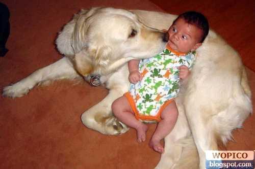 Shocking Baby