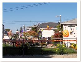 october 10, 2008 026-1