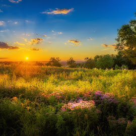 Dream On by Mark Goodman - Landscapes Sunsets & Sunrises ( hdr, sunset, landscape, surreal, hastings, spring lake park )