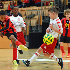 Shoot! by Marco Bertamé - Sports & Fitness Soccer/Association football ( futsal, ball, red, indoor, football, shoot, white, yellow, black, soccer )