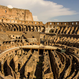 Colosseum by Tarun Sethi - Buildings & Architecture Statues & Monuments ( monuments, building, colosseum, rome, monument, italy )