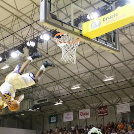 flying basketball player by Brad Kava - Sports & Fitness Basketball