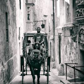 circle by Jelena Brankovic - Transportation Other ( malta )