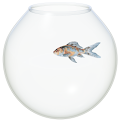 The Fish Bowl icon