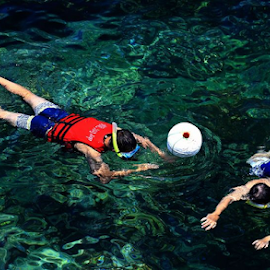 Snorkelling by Angela Chen - Sports & Fitness Swimming ( water, snorkelling, snorkel, swimming )