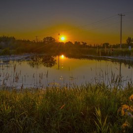 Shine Upon The Prairies by Joseph Law - Landscapes Sunsets & Sunrises ( bushes, sunset, the prairies, trees, reflections, shine upon, peaceful evening, wild flowers )