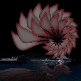 sim1 by Dietmar Kuhn - Illustration Abstract & Patterns ( water, reflection, pink, flower, water splash )