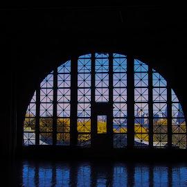 Ellis Island window view by Linda Antenucci - Buildings & Architecture Public & Historical (  )