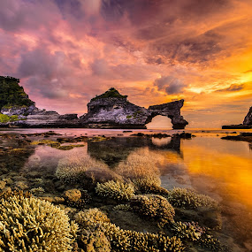 by Wisnu Taranninggrat - Landscapes Waterscapes