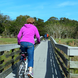 Bikes on Bridge in Park by Kathy Rose Willis - City,  Street & Park  City Parks ( rider, park, riding, florida, green, trail, exercise, brown, fun, bridge, gray )