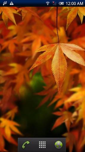 【免費個人化App】Autumn Colors-APP點子