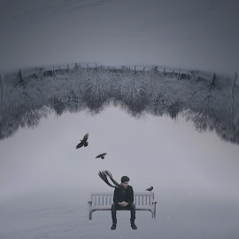 When will the curse rise by Erfan Mirabedini - Digital Art People ( #art #bench #blood #circle #conceptual #confused #crative #crow #curse #dark #depression #down #dream #emotional #erfan #erfanmira #feeling #fly #hate #iranian #love #male #mirabedini #relationship #snow #surreal #trees #up #upside )