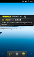 Screenshot of French Translator / Dictionary