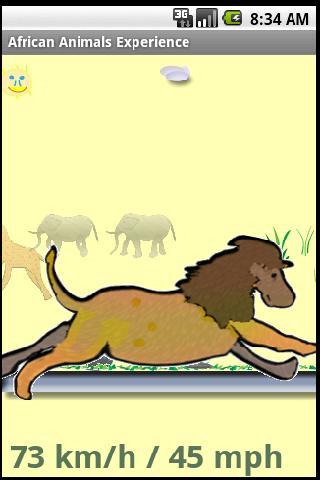 Animals Speedometer Experience