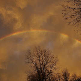 Untitled by Brian Hughes - Landscapes Weather ( why hello there, sky, trees, rainbow, rain )