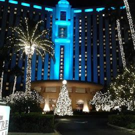 Lights by Lisa Andrews - City,  Street & Park  Street Scenes