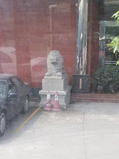台山民政狮