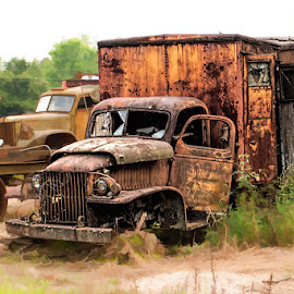 Boneyard by Lowell Griffith - Transportation Other ( truck, rust, abandoned )