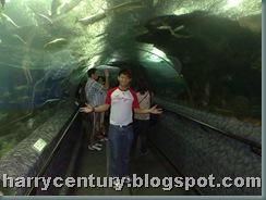SG Trip - Day 2 -11