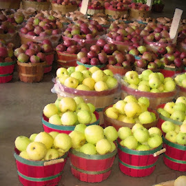 Apple Barn  by Kaye Petersen - Food & Drink Fruits & Vegetables ( fruit, market, barn, food, georgia, apples, baskets,  )