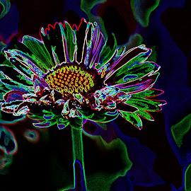 Neon Flower by Nikki Wilson - Digital Art Things ( colour, art, digital, design, flower )