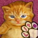 Kitten Calculator icon