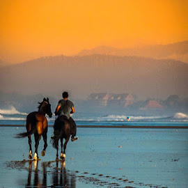 Together with you by Raymond Sidauruk - Animals Horses ( water, horse, man )