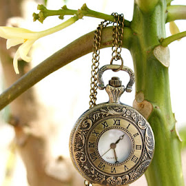Time In A Pocket by Joshua Jones - Artistic Objects Clothing & Accessories