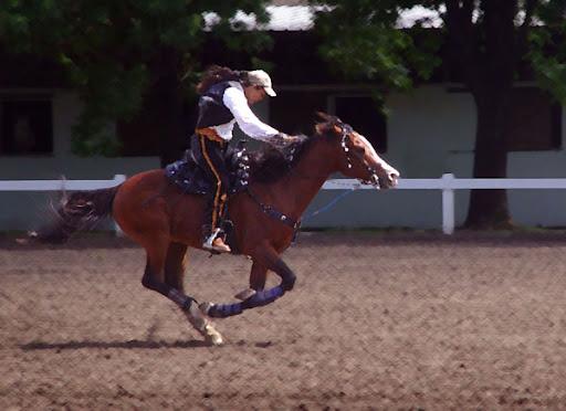 Horse and rider. Foto: Horacio Iannella