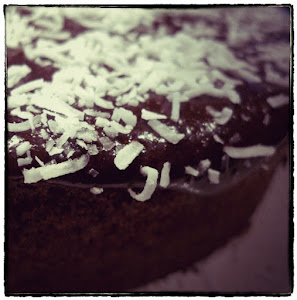 Delicious chocolate cake with coconut