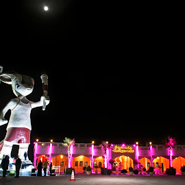 Qatar by Antony Satheesh - City,  Street & Park  City Parks