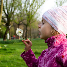 The Dandelion by Constantinescu Adrian Radu - Babies & Children Toddlers ( dandelion )