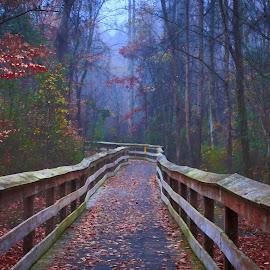 Footbridge at the River Trail by Carol Plummer - City,  Street & Park  City Parks ( footbridge, nature, park, fog, trail, city,  )