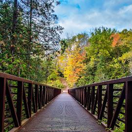 Bridge by Tim Morris - City,  Street & Park  City Parks ( p morris photography, parks, sault, soo, bridges, the soo, sault ste marie,  )