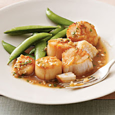 Pan-Roasted Scallops With Sesame Sauce