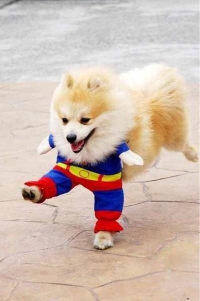 A szuperhős - egy vicces kép