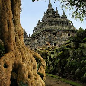 Plaosan Temple by Widianto Didiet - Buildings & Architecture Public & Historical ( temple, indonesia )