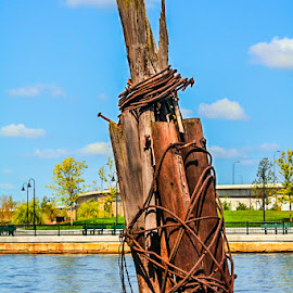 Old Dock by Steve Marra - Novices Only Objects & Still Life ( boston harbor )
