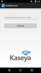 Kaseya WorkBrowser - screenshot