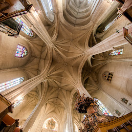 Ceiling of Catholic Church, Cluj by Matthew Haines - Buildings & Architecture Places of Worship