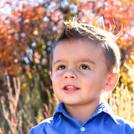 TK 2014 #3 by Stacey Cannon - Babies & Children Child Portraits ( handsome cute, fall, handsome, cute, boy, portrait )
