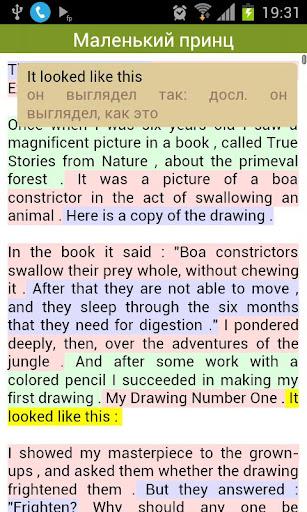 The Little Prince. Bibook