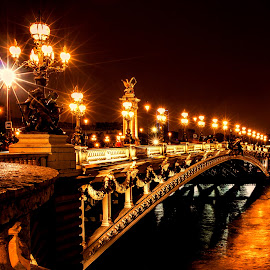 Midnight in Paris  by Dana Walker - Buildings & Architecture Bridges & Suspended Structures ( paris, ornate, europe, seine river, night photography, france, bridge )