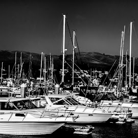 At the harbor by Tammy Arruda - Transportation Boats
